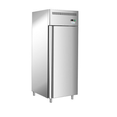Professional static refrigerator with AISI 201 stainless steel frame. GGN600TN-FC - Forcar